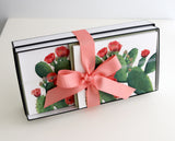 Stationery Gift Box | Cactus