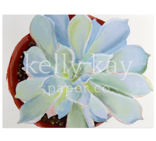 Art Print | Succulent Single