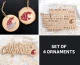 12/14 WSU Ornament Paint & Sip (Central & Eastern)