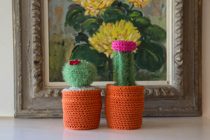 How to Crochet Your Own Amigurumi Cactus with Our Crochet Kits