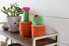 Ruby and Charley crochet amigurumi craft kits