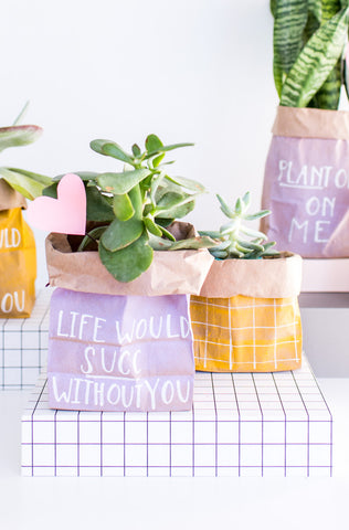 Succulent planter bag wrapping from Paper N Stitch blog