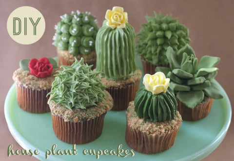 cactus and succulent cupcakes