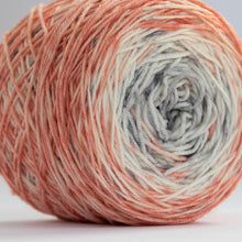 Load image into Gallery viewer, Sock Set with Deep Coral Cake and Indigo Mini -- Superwash Merino / Nylon