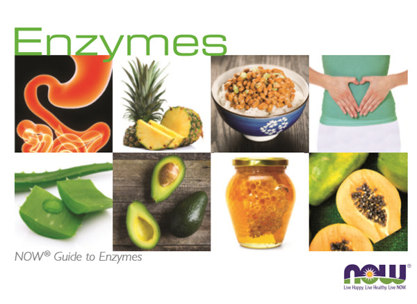 The Health Benefits Of Enzymes