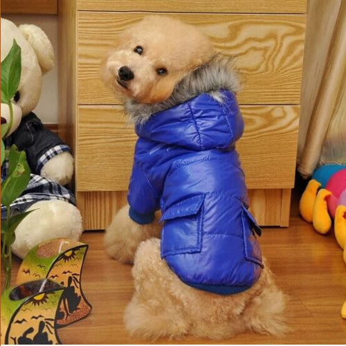 Waterproof Winter Coat for Dogs