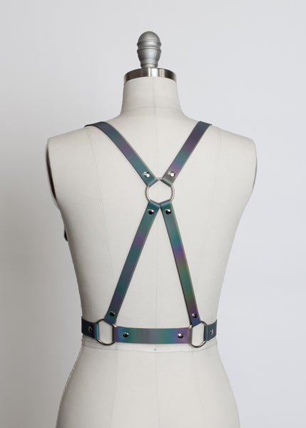 Reflective Rainbow Harness
