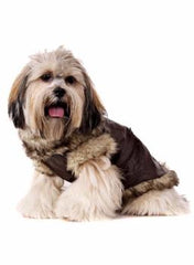 Brown Leather Fur Trimmed Flying Jacket (Coat) - Coat - Urban Pup - High Society Canine LLC - 3