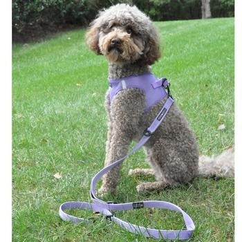 6 Way Multi-Function Dog Leash - Paisley Purple-Doggie Design-High Society Canine