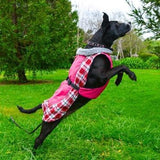 Alpine All Weather Dog Coat - Raspberry Plaid-Doggie Design-High Society Canine