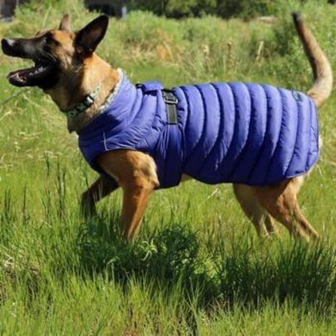 Alpine Extreme Weather Puffer Dog Coat - Navy Blue-Doggie Design-High Society Canine