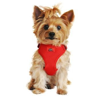 Wrap and Snap Choke Free Dog Harness - Flame Red-Doggie Design-High Society Canine