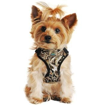 Wrap and Snap Choke Free Dog Harness - Island Tan-Doggie Design-High Society Canine