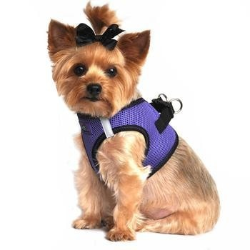 American River Top Stitch Dog Harness - Ultra Violet-Doggie Design-High Society Canine