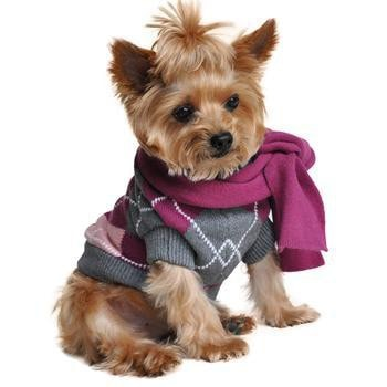 Argyle Purple Dog Sweater with Scarf-Doggie Design-High Society Canine