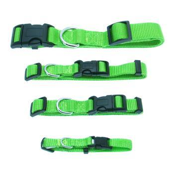Barking Basics Dog Collar - Green-Barking Basics-High Society Canine