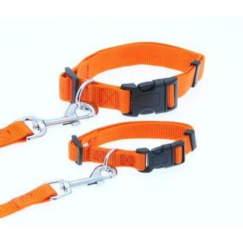 Barking Basics Dog Collar - Orange-Barking Basics-High Society Canine