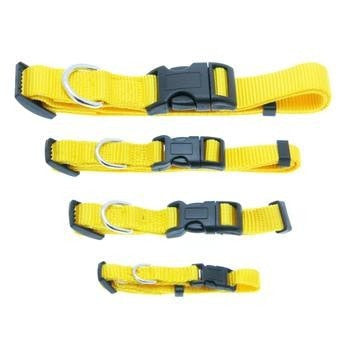 Barking Basics Dog Collar - Yellow-Barking Basics-High Society Canine