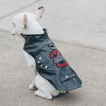 Biker Dawg Motorcycle Dog Jacket by Doggie Design - Black-Doggie Design-High Society Canine