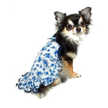 Blue Rose Dog Dress by Hip Doggie-Hip Doggie-High Society Canine