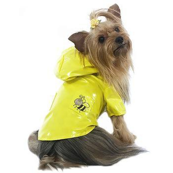 Bumble Bee Dog Raincoat by Cha-Cha Couture - Yellow-Cha-Cha Couture-High Society Canine