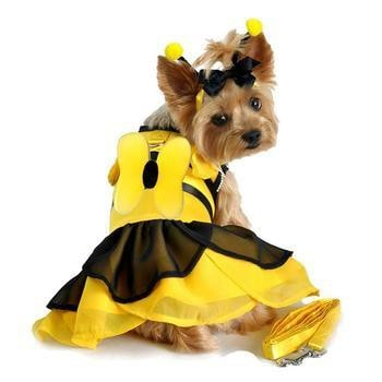 Bumblebee Fairy Dog Costume Harness Dress by Doggie Design-Doggie Design-High Society Canine