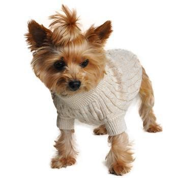 Cable Knit Dog Sweater by Doggie Design - Oatmeal-Doggie Design-High Society Canine