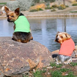 Cotton Dog Tank by Doggie Design - Green Flash-Doggie Design-High Society Canine