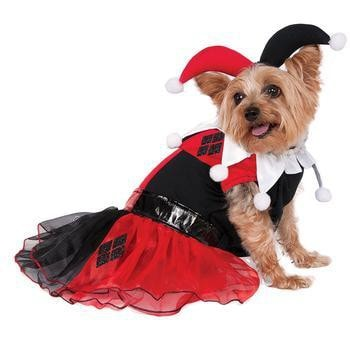 DC Comics Harley Quinn Dog Costume-Rubies Costumes-High Society Canine