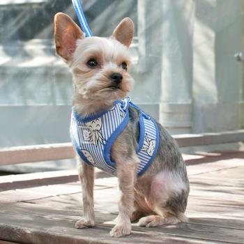 EasyGO Pineapple Dog Harness by Dogo - Blue-DOGO-High Society Canine