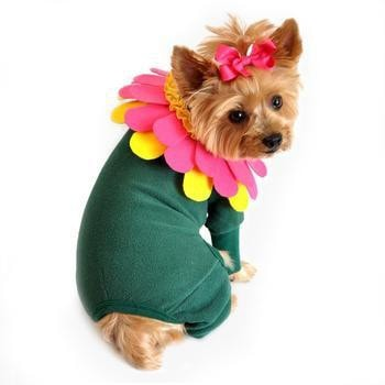 Flower Dog Costume with Flower Headpiece by Doggie Design-Doggie Design-High Society Canine