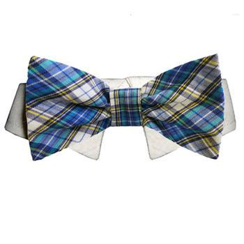 Isaac Dog Shirt Collar and Bow Tie - Blue and Yellow Plaid-Pooch Outfitters-High Society Canine