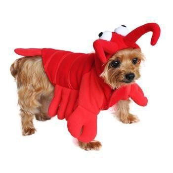Lobster Dog Costume by Doggie Design-Doggie Design-High Society Canine