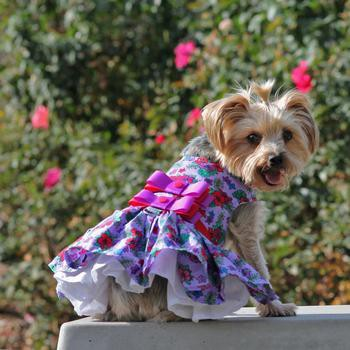 Purple and Red Floral Dog Harness Dress by Doggie Design-Doggie Design-High Society Canine