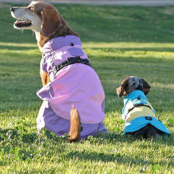 Dog Raincoat Body Wrap by Doggie Design - Pink and Lavender-Doggie Design-High Society Canine