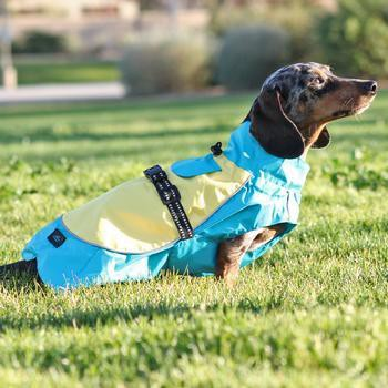Dog Raincoat Body Wrap by Doggie Design - Blue and Yellow-Doggie Design-High Society Canine
