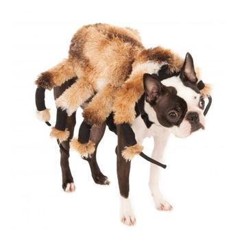 Rubies Giant Spider Dog Costume High Society Canine