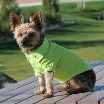 Solid Dog Polo by Doggie Design - Green Flash