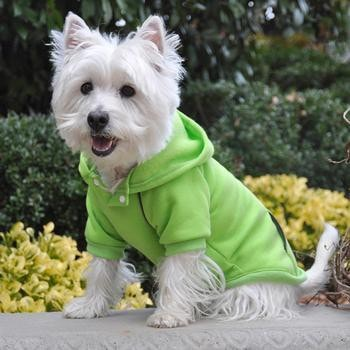 Sport Dog Hoodie by Doggie Design - Green Flash-Doggie Design-High Society Canine