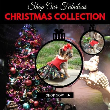 Best Dog Christmas Clothes | High Society Canine