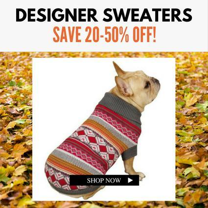 Best Small Dog Sweaters | High Society Canine