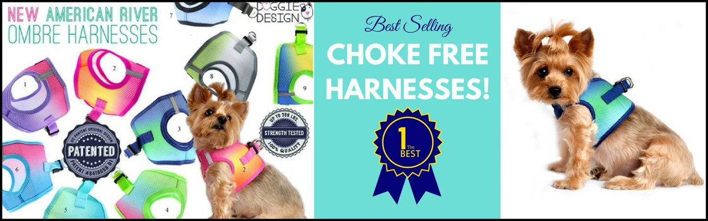 Best Choke Free Dog Harnesses | High Society Canine