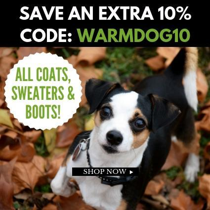Dog Clothes For Autumn | On Sale | High Society Canine