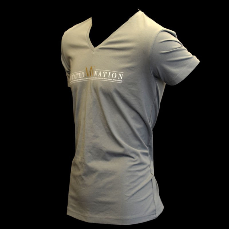 Men's Premium V-Neck T-shirt Grey