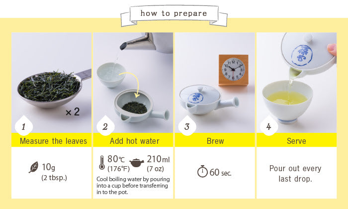 How to prepare Sencha