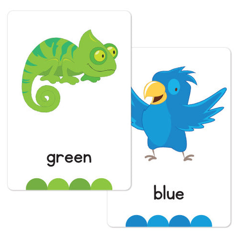 Colour Animal Flash Cards