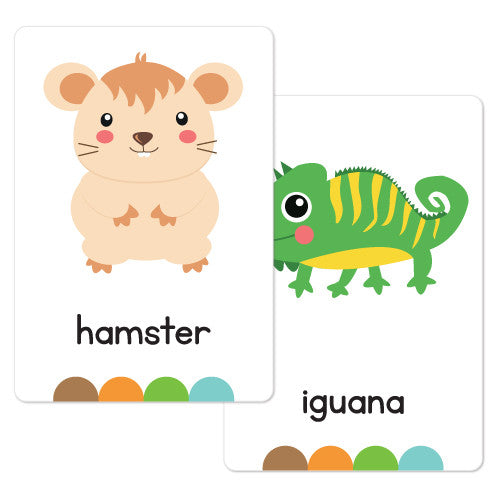 My Pets Flash Cards