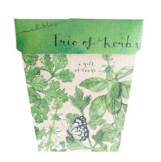 Trio of Herbs Gift of Seeds