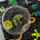 Rainforest Exploration Discovery Box Sensory Bin educational activity