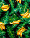Bananas on Leaves Pattern Detail - Woodstock Laundry